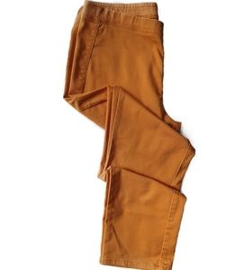 Uniqlo Burnt Orange Rustic Sunflower Pull on Pants